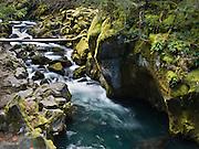Mossy rocks and the North Umpqua River, on the half-mile trail to Toketee Falls, Oregon, USA.