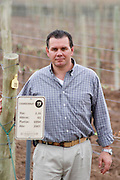In the vineyard a sign saying Chardonnay, Roberto Schroeder, the owner and director. Bodega Familia Schroeder Winery, also called Saurus, Neuquen, Patagonia, Argentina, South America