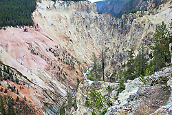 A panoply of color in the Grand Canyon of the Yellowstone River.