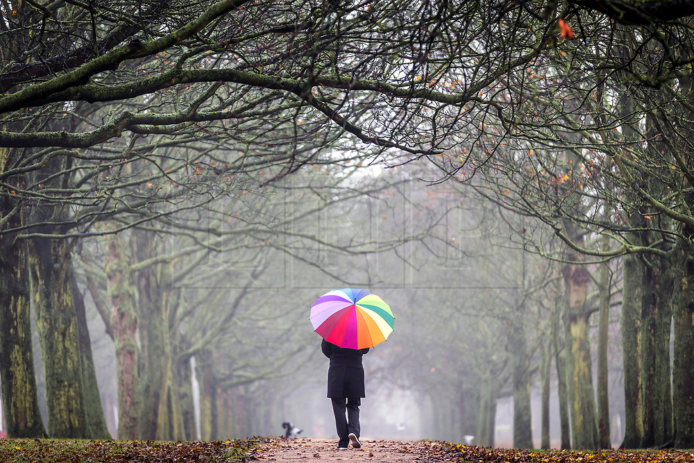 © Licensed to London News Pictures. 27/11/2018. Leeds UK. A woman walks through the morning mist & drizzle at Temple Newsam park in Leeds this today as the Met office issue a Yellow warning of wind in Yorkshire in the coming days. Photo credit: Andrew McCaren/LNP