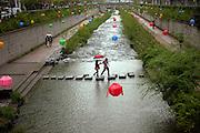 Der Cheonggyechon wurde in den 60er Jahren durch eine mehrspurige Strasse verdeckt. Inzwischen hat jedoch auch die Stadt Seoul den Wert von Grünflächen erkannt und in einem aufwendigen Projekt die (ohnehin mit Sicherheitsmängeln behaftete) Strasse wieder entfernt. Entstanden ist ein neuer, nun allerdings künstlicher Fluss quer durch das Zentrum der Stadt, dessen Wege zu einem Spaziergang einladen. Für die Feierlichkeiten von Buddhas Geburtstag (2. Mai diesen Jahres) wurde der Bereich mit bunten Lampions dekoriert.<br /> <br /> Cheonggyecheon is a nearly 6 km long, modern public recreation space in downtown Seoul, South Korea. The massive urban renewal project is on the site of a stream that flowed before the rapid post-war economic development required it to be covered by transportation infrastructure. The $900 million project attracted much criticism initially but opened in 2005 and is now popular among Seoul residents and tourists. For the celebration of Buddhas birthday (2nd of May this year) the area was decorated with colorful lampions.