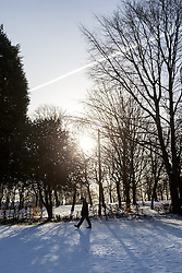 © Licensed to London News Pictures . 26/01/2013 . Salford , UK . The low winter sun bursts through bare trees . People enjoy fresh overnight snow this morning (26th January 2013) in Buile Hill Park , Salford . Photo credit : Joel Goodman/LNP
