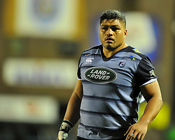 Cardiff Blues' Nick Williams <br /> <br /> Photographer Mike Jones/Replay Images<br /> <br /> Guinness PRO14 Round 14 - Cardiff Blues v Cheetahs - Saturday 10th February 2018 - Cardiff Arms Park - Cardiff<br /> <br /> World Copyright © Replay Images . All rights reserved. info@replayimages.co.uk - http://replayimages.co.uk