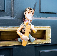 woodys adventures in lockdown Photo Mark Anton Smith