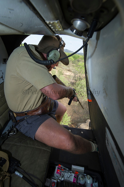 Elephant capture vet preparing to dart<br /> Aerial view of elephants from Hughes 500 helicopter to be darted for relocation.<br /> Zimbabwe