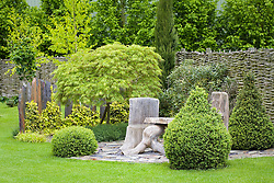 Rustic table and chairs on patio area paved with slate. Slate pillars used as fence, clipped box topiary. Woven hurdle fence. Acer dissectum Viride Group. Design: John Massey