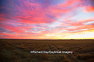 63893-02906 Sunrise at Prairie Ridge State Natural Area, Marion Co, IL