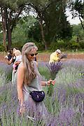 Vertical of women in lavender field<br />