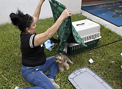 Ivelisse Soto prepares carying crates for her dogs, Tinzy and Looney, outside Lakeside Elementary School hurricane shelter, which allows pets, in Pembroke Pines, FL, USA., as powerful Hurricane Irma heads toward Florida on Saturday, September 9, 2017. Photo by Taimy Alvarez/Sun Sentinel/TNS/ABACAPRESS.COM
