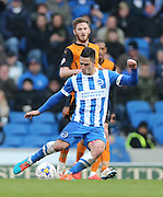 Beram Kayal, Brighton midfielder during the Sky Bet Championship match between Brighton and Hove Albion and Wolverhampton Wanderers at the American Express Community Stadium, Brighton and Hove, England on 14 March 2015.