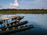 Dugout canoes are docked for the night on Añangu Lake, located in the heart of the Napo Wildlife Center, Amazon, Ecuador. The ecolodge is owned and operated by the Quechua Indians living in a nearby community.