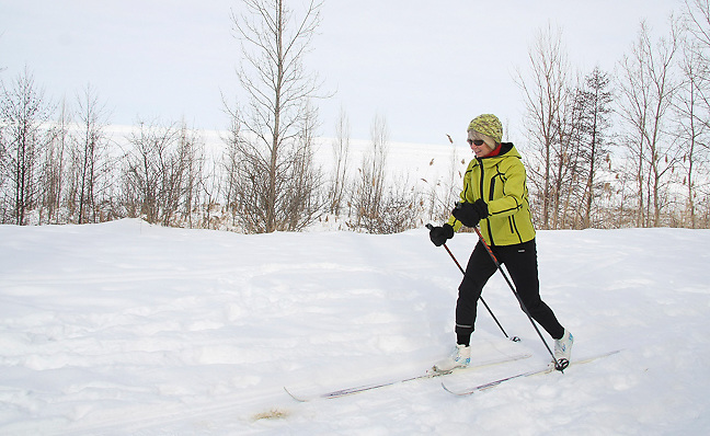 CxC skiing near Lake Erie