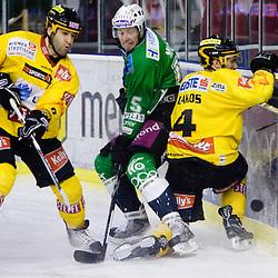 20100207: Ice-hockey - EBEL league, HDD Tilia Olimpija vs EV Vienna Capitals