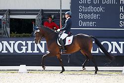 Vasaryova Hana, CZE, David Du Plessis-Belliere<br /> Longines FEI/WBFSH World Breeding Dressage Championships for Young Horses - Ermelo 2017<br /> © Hippo Foto - Dirk Caremans<br /> 04/08/2017