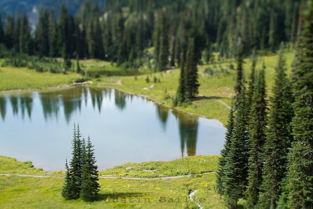 Tipsoo Lake. Mt. Rainier National Park, WA.