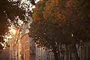 The iconic Haussmann architecture seen at dawn in Paris, France