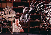 """Jose Bonaparte with Carnotaurus (left) and Amargasaurus (right), a """"jibbed"""" sauropod from the Argentina at the Museo de Ciencias Naturales de Buenos Aires."""