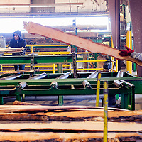031914       Cable Hoover<br /> <br /> Employees of Mount Taylor Manufacturing run wood through the sawmill in Milan Wednesday.