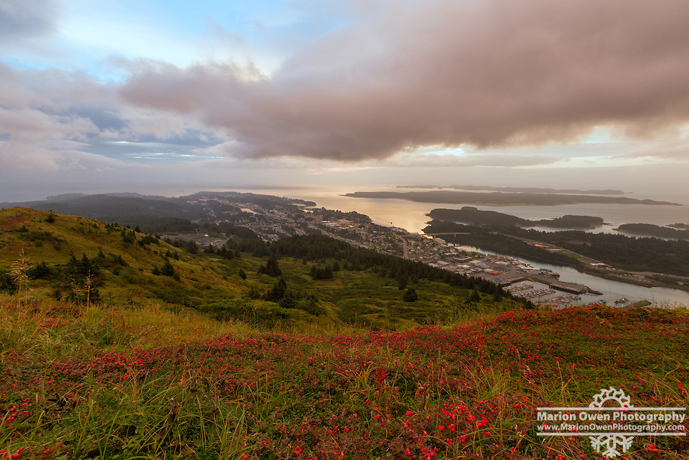 A carpet of red bearberries brighten the foreground in this sunrise overlook of Kodiak, Alaska.