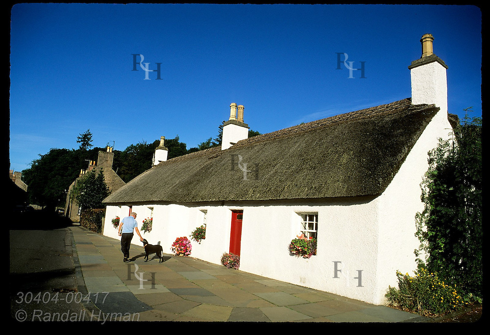 Man and dog walk past thatch-roof, whitewashed cottage in Glamis village, which borders Glamis Castle estate; Angus, Scotland.