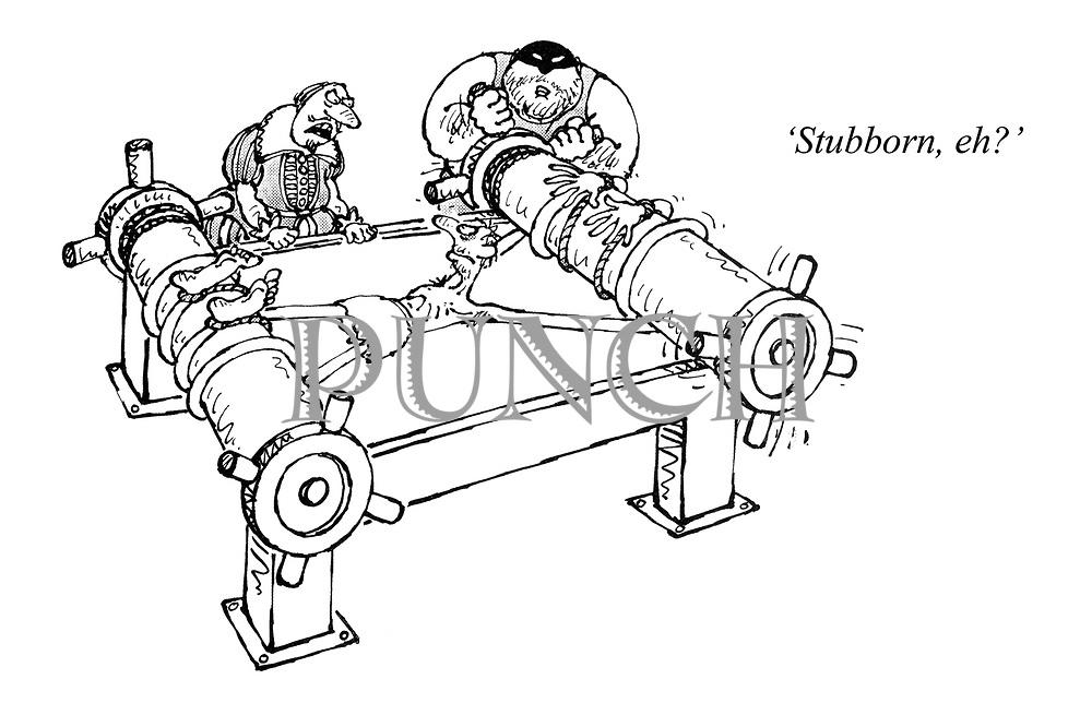 'Stubborn, eh?'