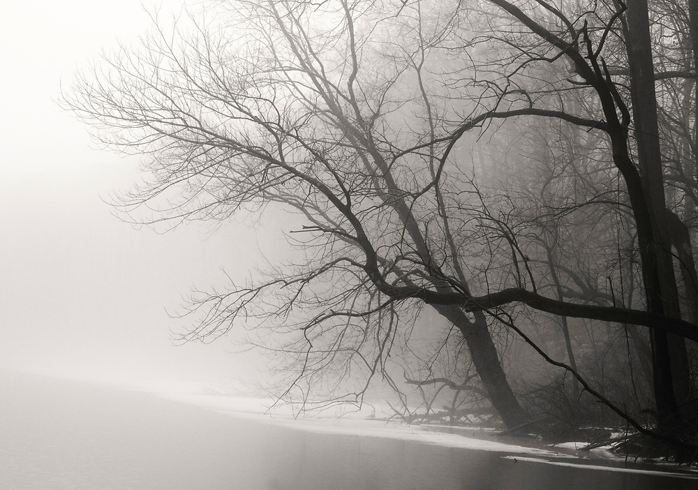 A veil of fog along the Delaware River Canal