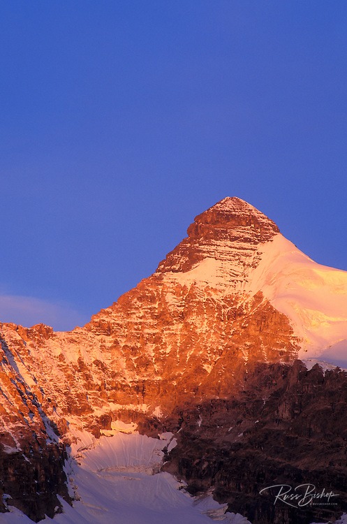 Dawn light on the south face of Mount Athabasca, Columbia Icefields area, Jasper National Park, Alberta, Canada.