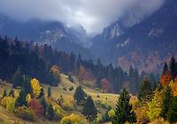 Rock of the King, NP Piatra Craiului, Transylvania, Southern Carpathian, Romania