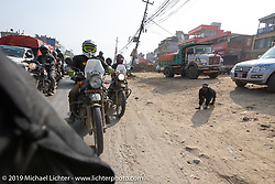 Tattoo artist Justin Big Meas Wilson riding a Royal Enfield Himalayan back into Kathmandu at the end of Motorcycle Sherpa's Ride to the Heavens motorcycle adventure in the Himalayas of Nepal. Riding from Daman back to Kathmandu. Wednesday, November 13, 2019. Photography ©2019 Michael Lichter.