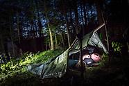 The Wood's Night