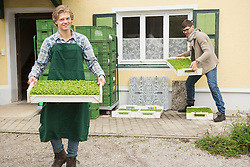 Organic farmers holding a plant crate for salad in farm, Bavaria, Germany