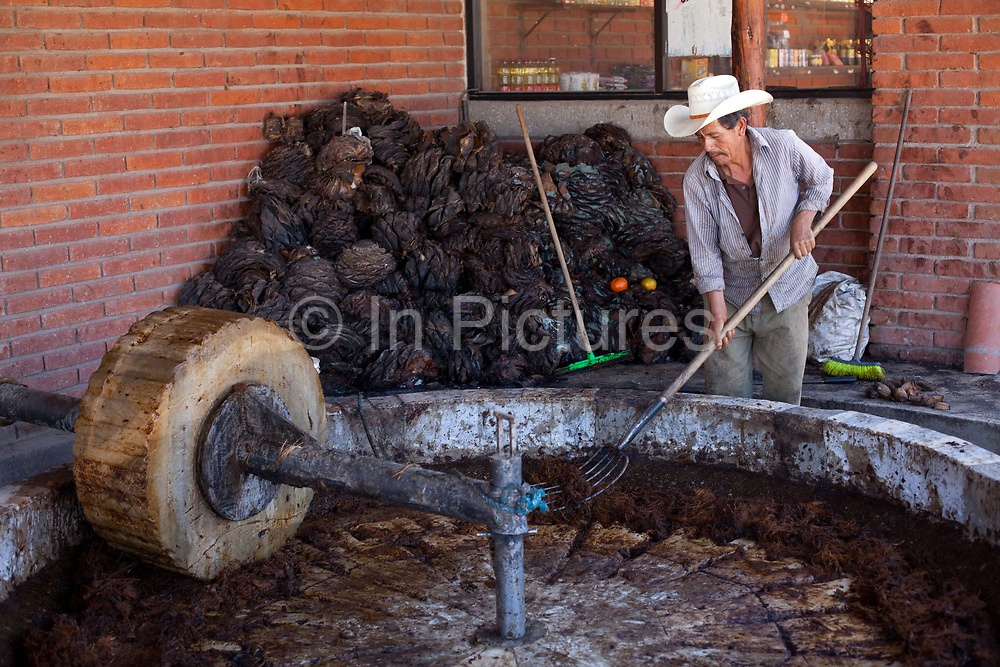 The agave is processed in a Palenque using a shorse and a round stone. Oaxaca in southern Mexico is known for being the main producer of Mescal, the drink of which Tequila is a type. The Mescal route around the area of Mitla has dozens of artisan distilleries which can be visited to take part in Mescal tasting sessions and to see how they cut the agave cactus and make the drink in the traditional way.