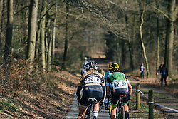 Only room for two on the narrow bike paths through the woods - Ronde van Drenthe 2016, a 138km road race starting and finishing in Hoogeveen, on March 12, 2016 in Drenthe, Netherlands.