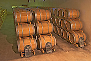The barrel aging cellar, full of barriques  - Chateau Belgrave, Haut-Medoc, Grand Crus Classe 1855