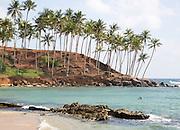 Palm trees and blue tropical ocean, Mirissa, Sri Lanka, Asia
