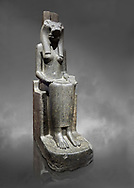 """Ancient Egyptian statue of goddess Sekhmet, grandodiorite, New Kingdom, 18th & 20thDynasty (1390-1150 BC), Thebes. Egyptian Museum, Turin. Grey Background.<br /> <br /> Sekhmet, """"the Powerful One"""" was a fearsome goddess symbolised by her lioness head. Daughter of the sun she personifies the disk of the world during the day. Sekhmet is the angry manifestation of Hathor inflicting the scourges of summer heat, famine and illness which is why the goddess needed to be exorcised every day. Drovetti Collection. C 249 .<br /> <br /> If you prefer to buy from our ALAMY PHOTO LIBRARY  Collection visit : https://www.alamy.com/portfolio/paul-williams-funkystock/ancient-egyptian-art-artefacts.html  . Type -   Turin   - into the LOWER SEARCH WITHIN GALLERY box. Refine search by adding background colour, subject etc<br /> <br /> Visit our ANCIENT WORLD PHOTO COLLECTIONS for more photos to download or buy as wall art prints https://funkystock.photoshelter.com/gallery-collection/Ancient-World-Art-Antiquities-Historic-Sites-Pictures-Images-of/C00006u26yqSkDOM"""