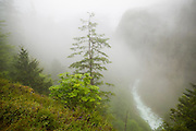 A break in the clouds reveals the Cascade River flowing far below, as seen from an overlook on Cascade River Road in Mount Baker-Snoqualmie National Forest, Washington.