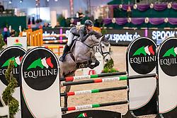 WOLF Charlie Ann (GER), Staedtebahn's Cornwell<br /> Leipzig - Partner Pferd 2019<br /> SPOOKS-Amateur Trophy<br /> Large Tour<br /> 17. Januar 2019<br /> © www.sportfotos-lafrentz.de/Stefan Lafrentz