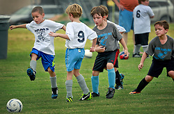 05 October 2013. Carrolton Boosters Soccer. New Orleans, Louisiana. <br /> U8 - Rams v Blue Marlins<br /> Photo; Charlie Varley