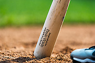 A close up view of the bat of Dayan Viciedo #24 of the Chicago White Sox during a game against the Minnesota Twins on September 16, 2012 at Target Field in Minneapolis, Minnesota.  The White Sox defeated the Twins 9 to 2.  Photo: Ben Krause