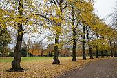 City of London Cemetery & Crematorium