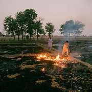 Slash and burn agriculture. On the outskirt of Jacobabad.