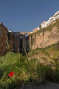 Puente Nuevo bridge in Malaga Province, Spain
