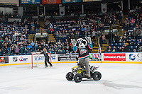 KELOWNA, CANADA - FEBRUARY 10: Kelowna Rockets' mascot Rocky Racoon stands on his Polaris quad on the ice during intermission against the Vancouver Giants on February 10, 2017 at Prospera Place in Kelowna, British Columbia, Canada.  (Photo by Marissa Baecker/Shoot the Breeze)  *** Local Caption ***