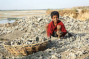 A child is using his bare hands to collect leather scraps a few meters away from the banks of the Holy Ganges River, (visible in the background) in one of the illegal dumping and burning grounds surrounding the area of Jajmau, Kanpur, Uttar Pradesh. The scrap leather is destined to be boiled and reduced to a thin dust: the raw material for fertilisers and chicken food production.