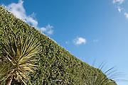 Queen Mary Gardens in Falmouth