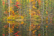 Reflection of autumn colors along the Vermilion River in the Sudbury District. The river flows into Lake Huron<br />Capreol<br />Ontario<br />Canada
