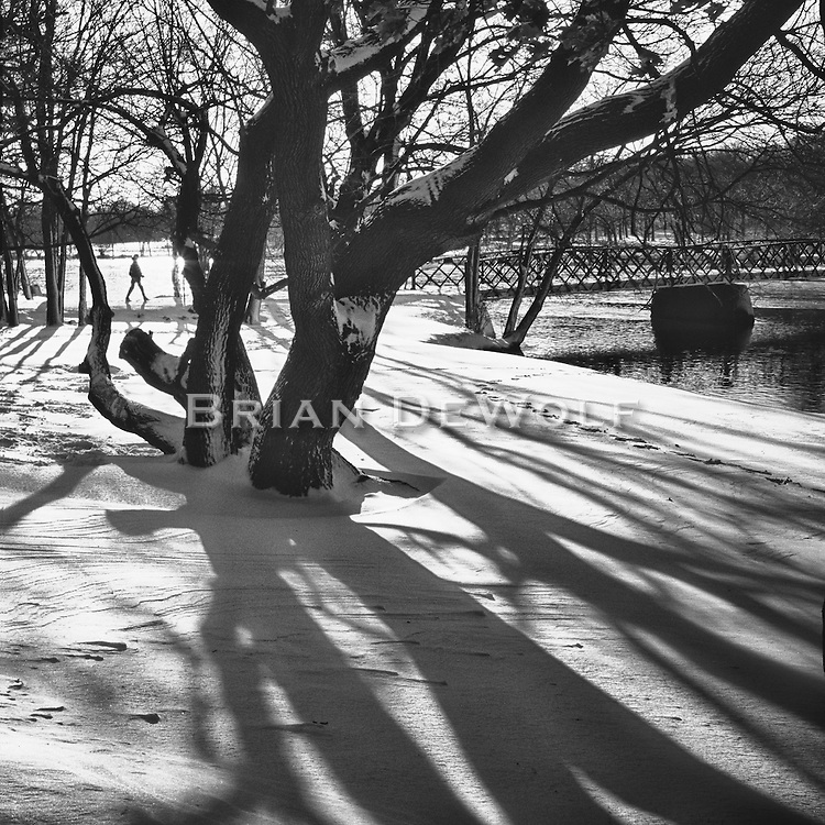 Shadows decorate a new fallen snow and a hiker enjoys the drisp air in Fabyan Forest Preserve.