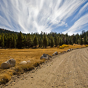 Mid Day Sun beams through epic clouds at Pickett's Junction at Highway 88 & 89 in Hope Valley CA.