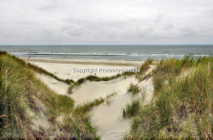 Nederland, Ameland, In de duinen op het waddeneiland Ameland.Foto: ANP/ Hollandse Hoogte/ Flip Franssen